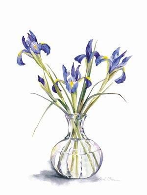 Iris in Decanter